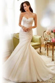 Sophia Tolli Wedding Dress Y11556 Sparrow